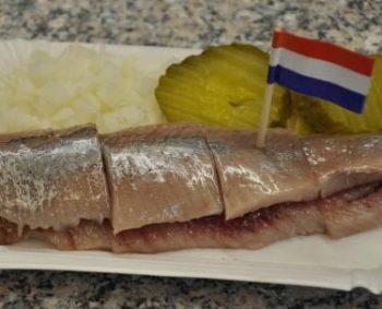 Hollandse haring