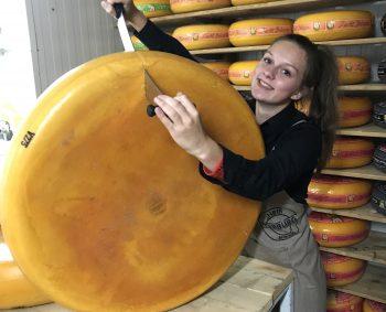 Reclame: Kaas van de boerderij Jumbo