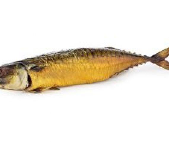 Gestoomde Makreel !!aanbieding!!